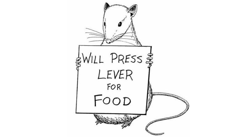24. Will Press Lever for Food