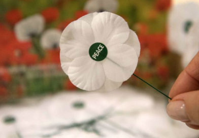 Wear a White Poppy